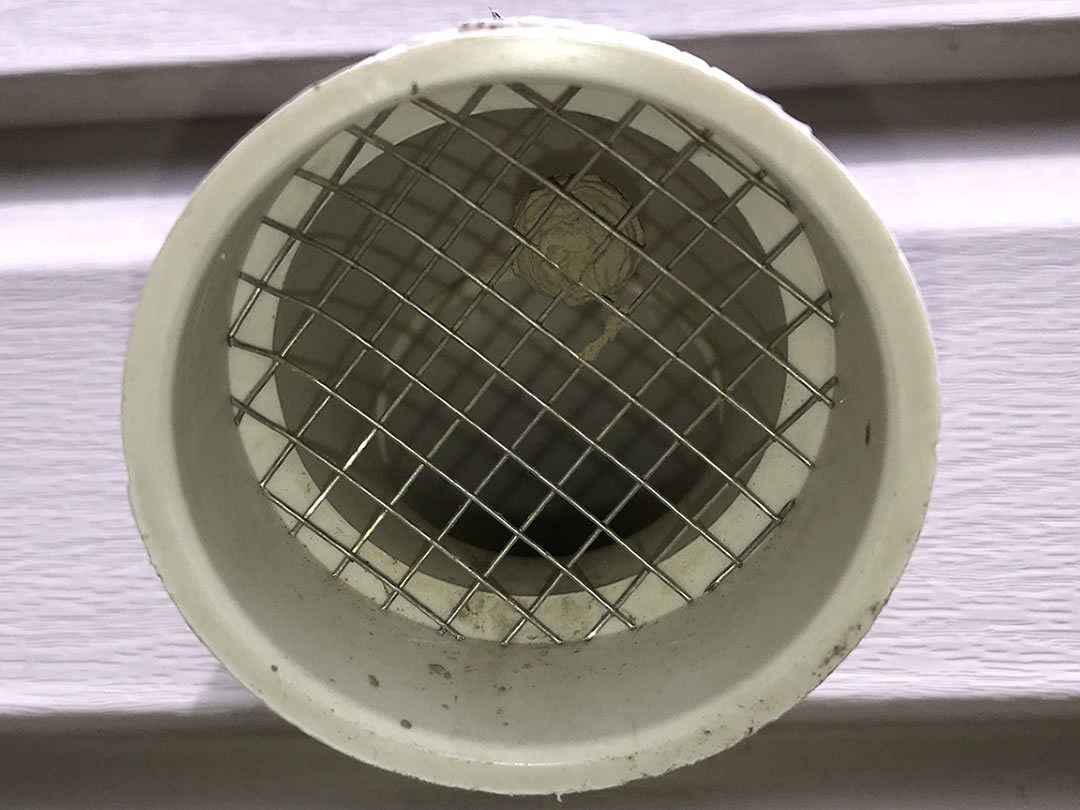 Preventing Bees And Wasps From Entering Furnace Vent Pipes